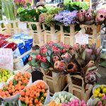 人工知能が花の仕入れをする時代
