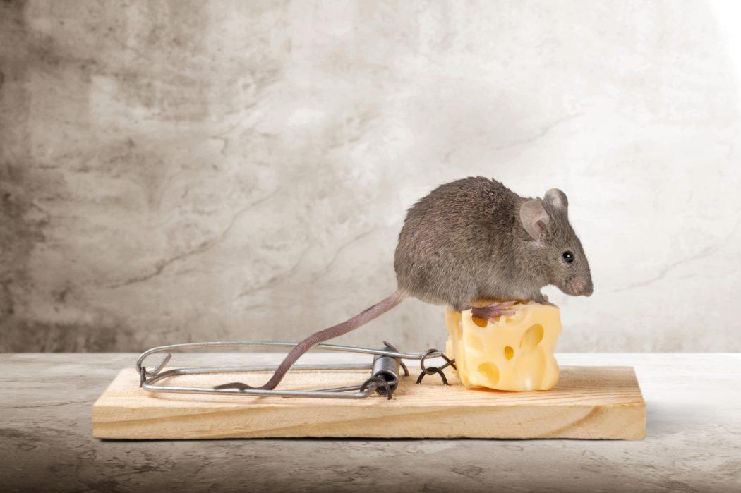 pyautogui_mouse